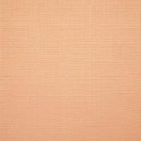 2071 Apricot
